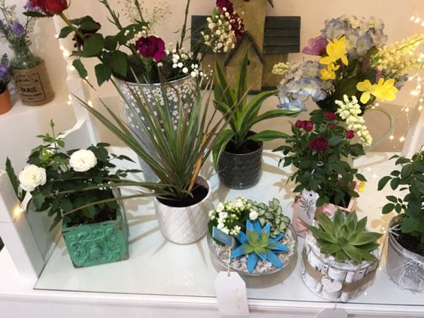 Flower Shop Tipton